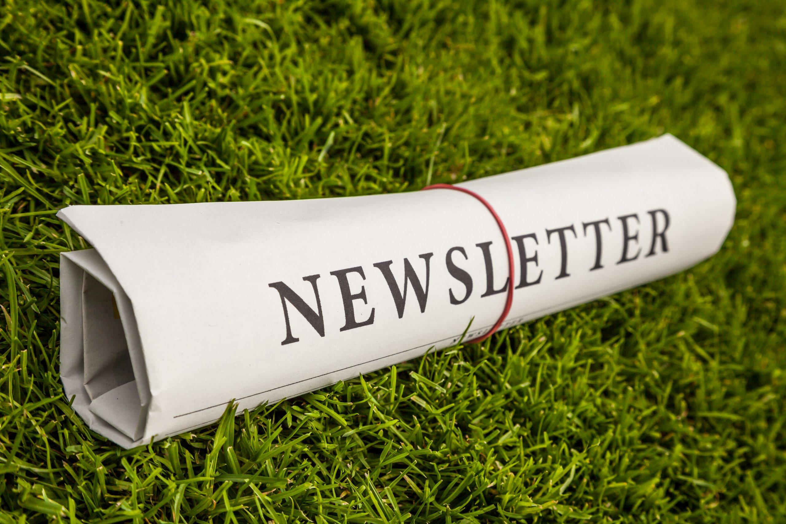 Newsletter GruenerFliegen